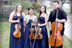 Bear Quartet